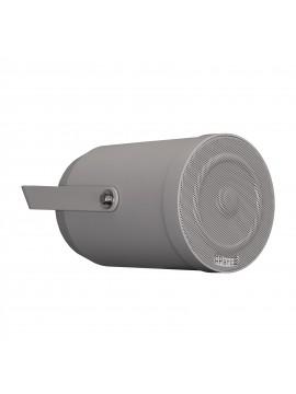 APART-AUDIO Projector de som 2 Vias 100V16W Cinza