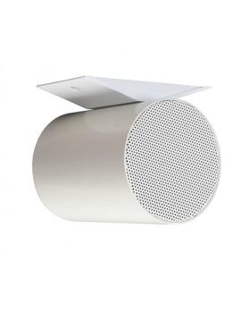APART-AUDIO Projector Duplo 20W@100V EN54-24